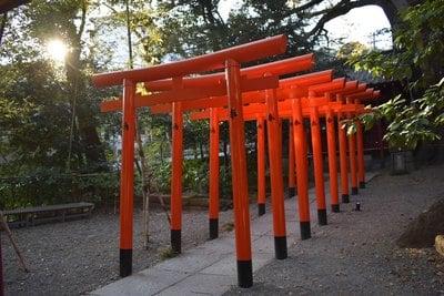 静岡県来宮神社の鳥居