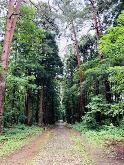 土津神社の自然