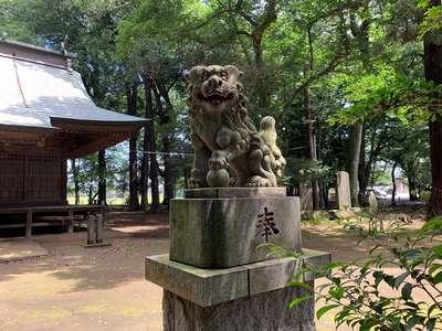 東蕗田天満社の狛犬