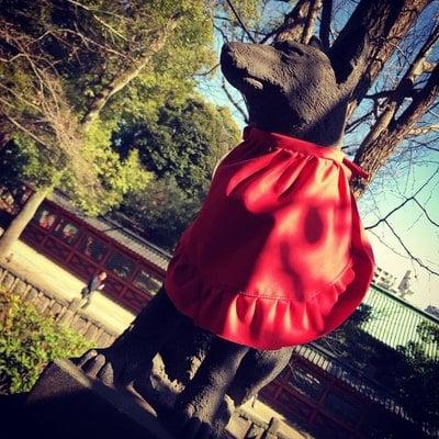 根津神社の狛犬