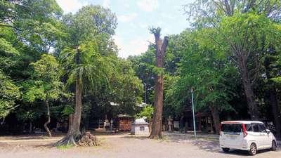小金井神社の建物その他