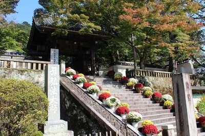 静岡県修禅寺の山門