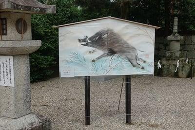 神田神社の絵馬