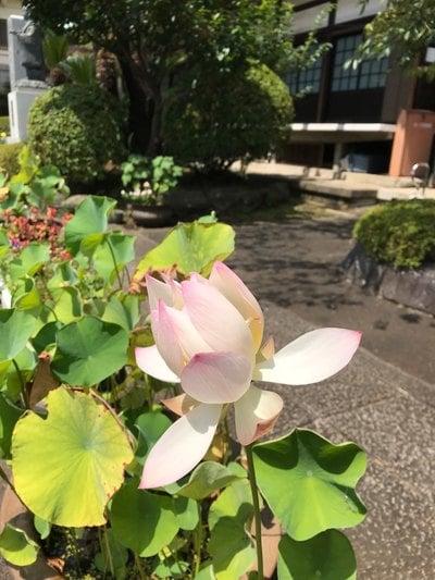宗隆寺(神奈川県)