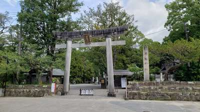 和歌山県闘鶏神社の鳥居