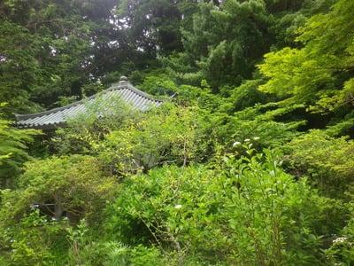 安國論寺(神奈川県)