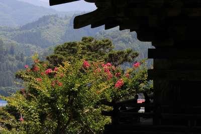 長野県大法寺の写真