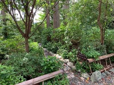 國吉神社の庭園