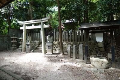 吉田寺のお墓