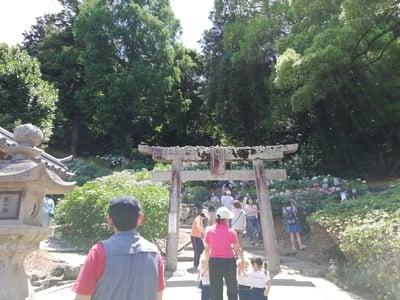 岡山県吉備津神社の鳥居