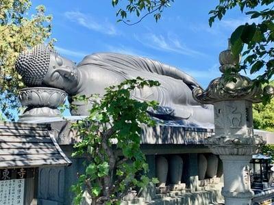 長崎県江東寺の写真