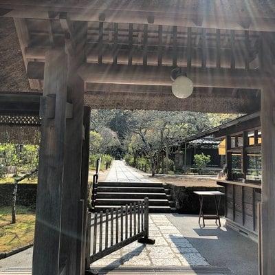 東慶寺(神奈川県)