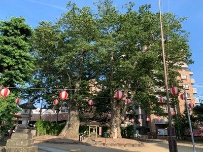 熊野神社(山形県)