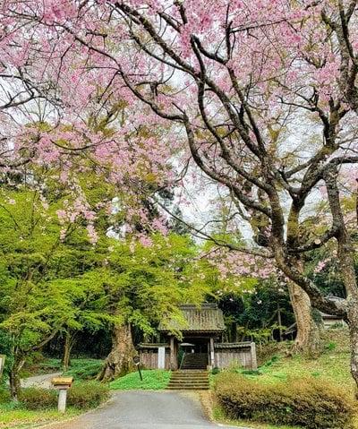 仏生寺(栃木県)