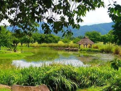 川中島古戦場八幡社の庭園