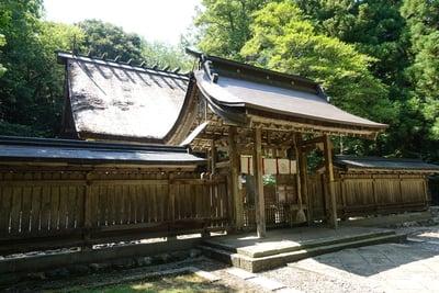 福井県若狭彦神社(上社)の本殿