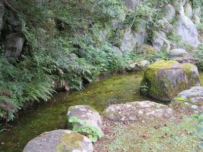 正蓮寺(静岡県)