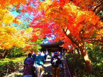 円覚寺(神奈川県)