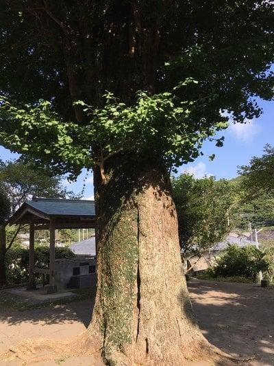 洲宮神社(千葉県)
