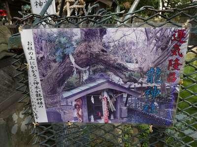 海南神社(神奈川県)
