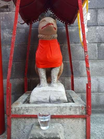 末広稲荷大明神の狛犬