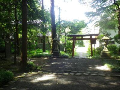 新宮神社(今宮)の建物その他