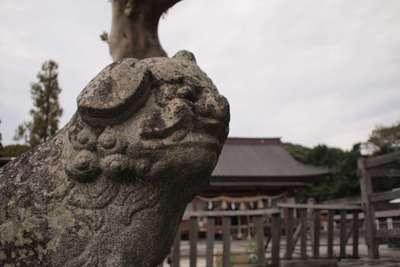 三柱神社の狛犬