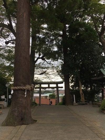 三宮比々多神社(神奈川県)