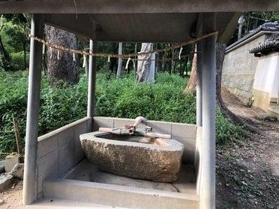 大杜御祖神社の手水