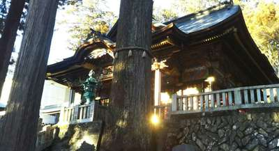 三峯神社の本殿