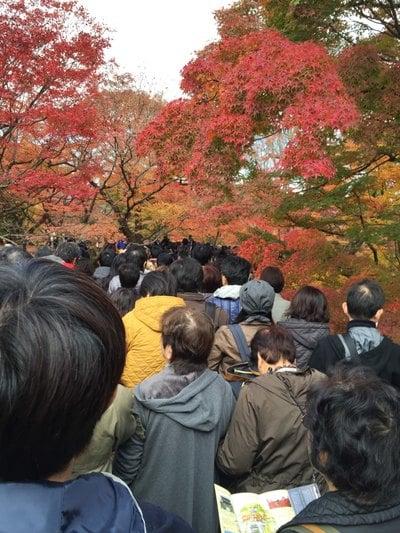 東福寺(京都府)
