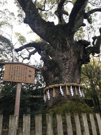 熱田神宮(愛知県)