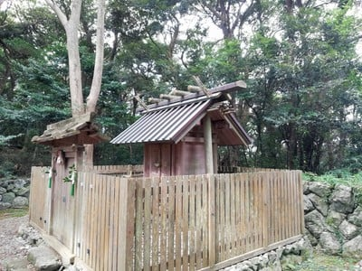 伊射波神社の本殿