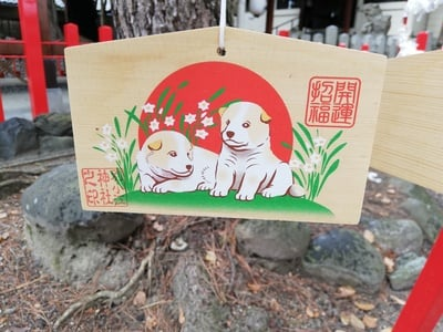 別小江神社の絵馬
