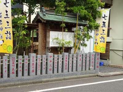 菊名神社の七五三参