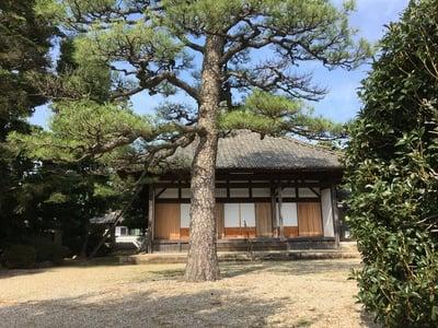 崇福寺(愛知県)