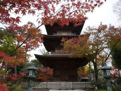 豪徳寺(東京都)