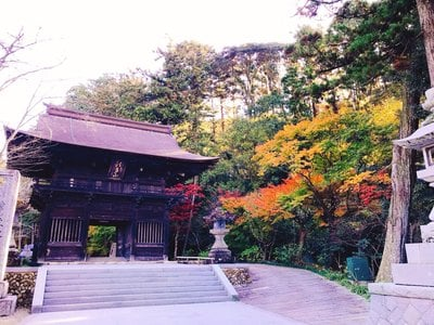 尊永寺(静岡県)