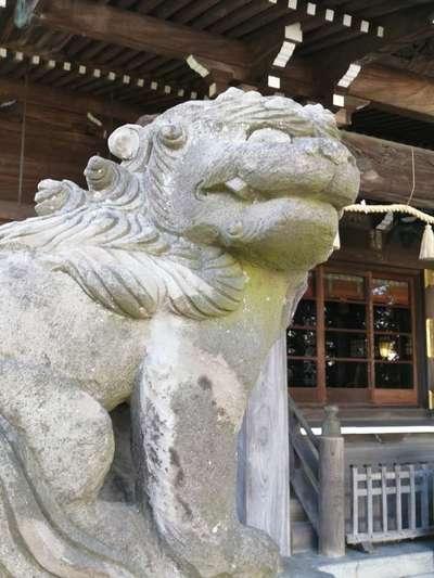 別雷皇太神の狛犬