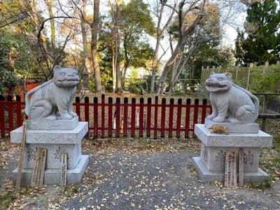 大江神社の狛犬