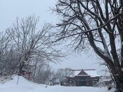 釧路一之宮 厳島神社の自然