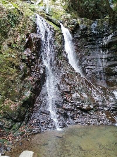 七宝滝寺の自然