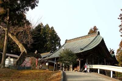 櫻田山神社の建物その他