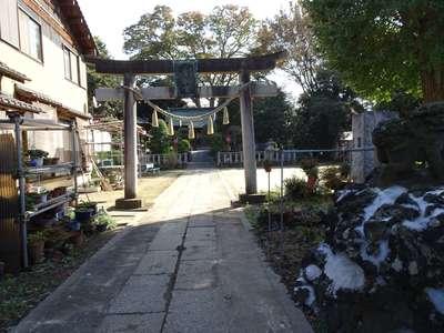 香取神社(関宿香取神社)の七五三参