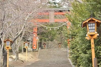 新倉富士浅間神社の鳥居