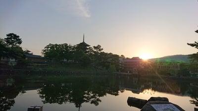 興福寺の庭園