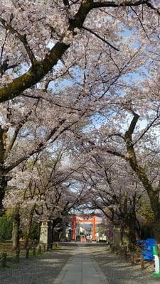 平野神社(京都府)