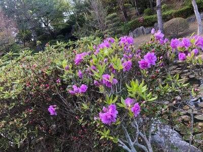 大生郷天満宮の庭園