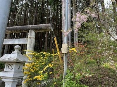 高龗神社(栃木県)