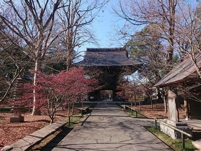 浄真寺(東京都)
